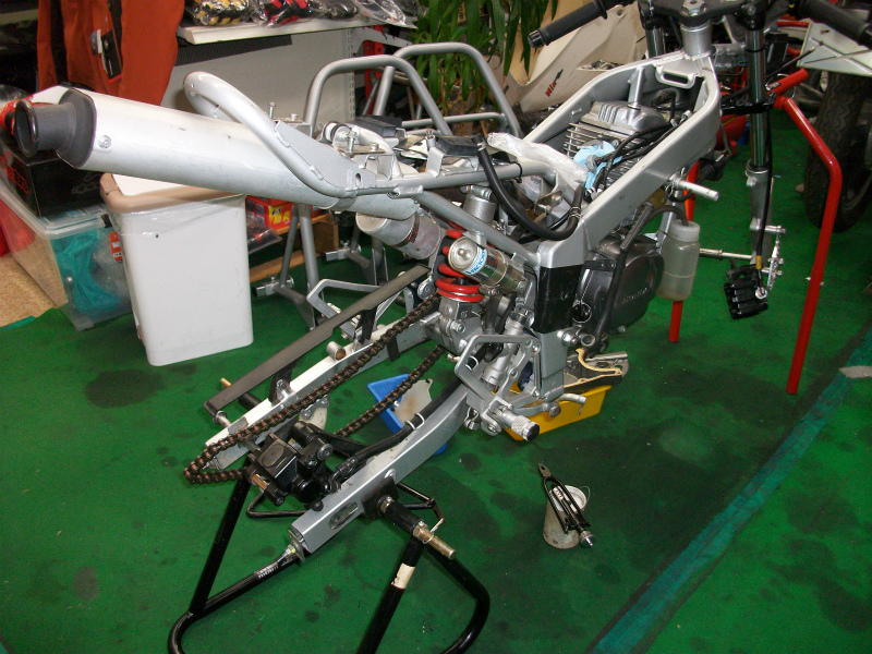 IMGP5543